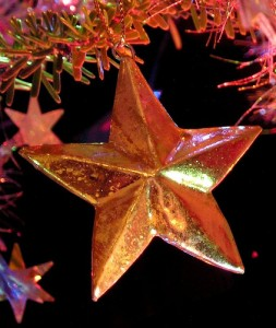 christmas star 253x300 ** NEW OFFERS **